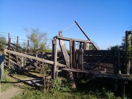 Foto Campo en Venta en  Gualeguay ,  Entre Rios  465 ha. Gualeguaychu