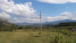 Foto Terreno en Venta en  Chilchota ,  Michoacán  Terreno en Chilchota