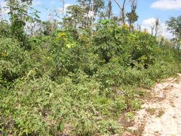 Foto Terreno en Venta en  Leona Vicario,  Cancún  TERRENOS EN VENTA EN CANCUN EN LEONA VICARIO CARRETERA CANCUN-MÉRIDA