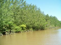 Foto Quinta en Venta en  Canal 5 ,  Zona Delta San Fernando  Canal 5 o Canal Seoane