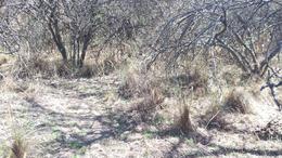 Foto Terreno en Venta en  Los Pozos,  San Javier  los pozos