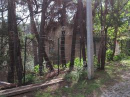 Foto Terreno en Venta en  Del Bosque,  Cuernavaca  VENTA TERRENO CON VISTA PANORAMICA - T24