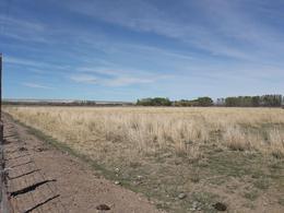 Foto Chacra en Venta en  28 De Julio,  Gaiman  fracción norte de la chacra 359, 28 de Julio, departamento Gaiman
