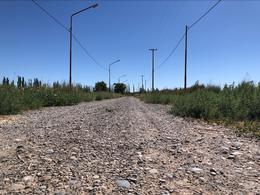Foto Terreno en Venta en  Allen,  General Roca  RP 65 Interseccion Bahia Blanca