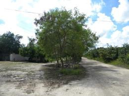 Foto Terreno en Venta   Renta en  Cancún ,  Quintana Roo  Terreno en Venta y Renta Av. López Portillo km 304.45. 5063 m2. Cancún
