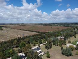 Foto Campo en Venta en  Canning (E. Echeverria),  Esteban Echeverria  1000 m de frente sobre Ruta 58, al lado de St. Thomas,