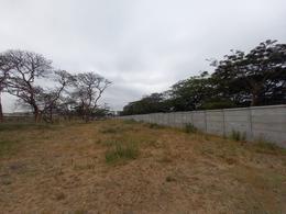 Foto Terreno en Venta en  Sur de Daule,  Daule  VENTA TERRENO VISTA AL RIO  KM.14 AV. FEBRES CORDERO