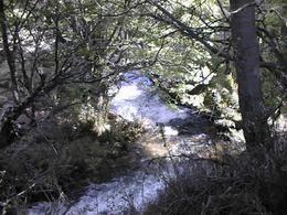 Foto thumbnail Campo en Venta en  Esquel,  Futaleufu  Parque Nacional Los Alerces
