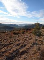 Foto Terreno en Venta en  San Martin De Los Andes,  Lacar  Alihuen Alto - San Martín de los Andes