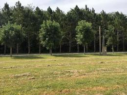 Foto Terreno en Venta en  Campos de Roca II,  Countries/B.Cerrado (La Plata)  campos de roca ii