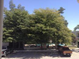 Foto Departamento en Renta en  Hermosillo ,  Sonora  RENTA DE DEPARTAMENTO EN CAMPESTRE RESIDENCIAL
