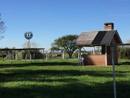 Foto Campo en Venta en  Uribelarrea,  Cañuelas  9 HA. URIBELARREA