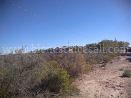 Foto Terreno en Venta en  Villa de Fuente,  Piedras Negras  Camino Real a Maravillas, Villa de Fuente