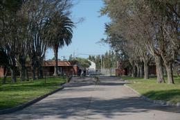 Foto Depósito en Alquiler en  Casavalle ,  Montevideo  Av Instrucciones y Carlos A Lòpez  Aprox