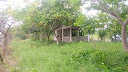 Foto Quinta en Venta en  Ejido Vega de Esteros,  Altamira  Venta de Rancho en Ejido Esteros de Altamira, Tam.