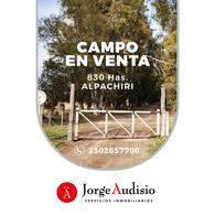 Foto Campo en Venta en  Alpachiri,  Guatrache  Alpachiri