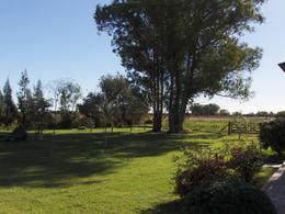 Foto Campo en Venta en  Las Flores ,  Interior Buenos Aires  Las Flores, 5km Ruta 3