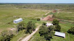 Foto Campo en Venta en  Galvez,  San Jeronimo  Galvez - Santa fe