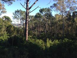 Foto Terreno en Venta en  Las cumbres ,  Maldonado  Imperdible Tierra para Desarrollo Inmobiliario en Cerro las Cumbres
