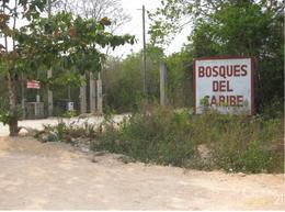 Foto Terreno en Venta en  Jardines Cancún,  Cancún  VENTA DE TERRENO EN BOSQUES DEL CARIBE, CANCUN!!!  C1626