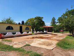 Foto Quinta en Venta en  Chihuahua ,  Chihuahua          GRANJA EN VENTA EN ALDAMA CERCA DEL SIROCO CON CASA AMUEBLADA