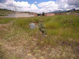 Foto Terreno en Venta en  Pueblo Santiago Undameo,  Morelia  TERRENO EJIDO LA NUEVA FLORIDA