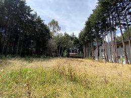 Foto Terreno en Venta en  Ex-hacienda Jajalpa,  Ocoyoacac  Hacienda Boximo
