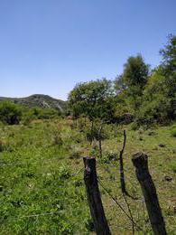 Foto Campo en Venta en  Alta Gracia,  Santa Maria  Campo en venta detrás Potrerillo de Larreta 2.7 Ha.