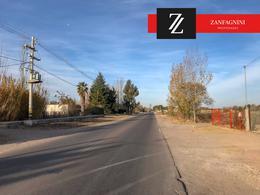 Foto thumbnail Terreno en Venta en  San Martin ,  Mendoza  San Martin