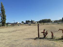 Foto Terreno en Venta en  Capital ,  Neuquen  Costa Nogal
