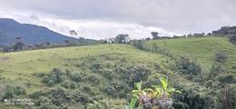 Foto Quinta en Venta en  Quito ,  Pichincha  OPORTUNIDAD!  VENDO HERMOSA HACIENDA EN ATAHUALPA, MOJANDA CHICO