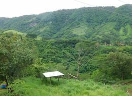Foto Terreno en Venta en  Bahía de Banderas ,  Nayarit   TERRENO CON CONSTRUCCIÓN TIPO HACIENDA EN  LA ESTANCIA