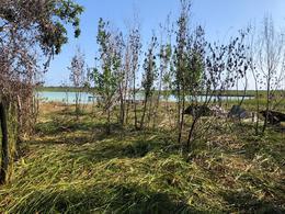 Foto Terreno en Venta en  Bacalar ,  Quintana Roo  Terreno en el estero de Chac entre  Bacalar y Chetumal