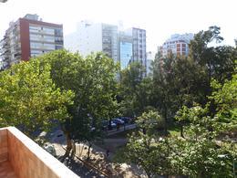 Foto Departamento en Venta en  Plaza Mitre,  Mar Del Plata  H. Yrigoyen entre Av. Colon y Brown