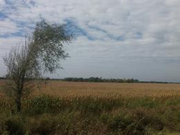 Foto Campo en Venta en  Alta Gracia,  Santa Maria  E-45 km 31.5