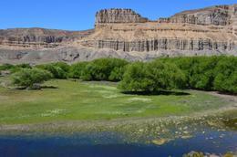 Foto Campo en Venta en  Paso Del Sapo,  Languiñeo  Ruta Provincial 12