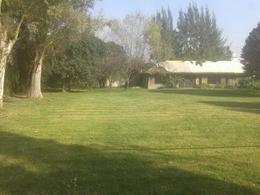 Foto Quinta en Venta en  Ezeiza ,  G.B.A. Zona Sur  SAN JUAN 600