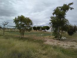 Foto Terreno en Venta en  El Solano,  Guanajuato  Terreno rústico en VENTA en Guanajuato por Puentecillas, acceso por carretera a Juventino Rosas
