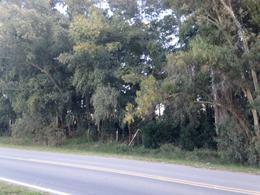 Foto Terreno en Venta en  Las Flores ,  Interior Buenos Aires  Las Flores, Km222 Rn°3, sobre asfalto