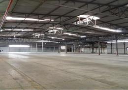 Foto Bodega Industrial en Renta en  Alajuela,  Alajuela   El Coyol / 190 estacionamientos / Nave industrial / Andén