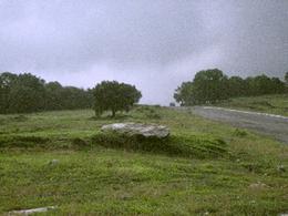Foto Terreno en Venta en  Fincas Ecuestres de Haras,  Amozoc  Venta de Terreno Residencial, campestre Haras, junto a Reserva Ecológica