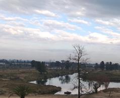 Foto Terreno en Venta en  Laguna Grande,  Villanueva  Laguna Grande 153