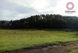 Foto Terreno en Venta en  Mesas de Dolores,  Valle de Bravo  Sobre carretera antes de llegar a Avándaro