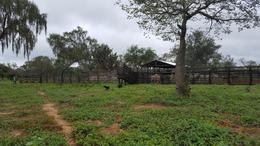 Foto Campo en Venta en  Mariscal José Félix Estigarribia ,  Boquerón  Zona Parque Nacional Tte. Enciso