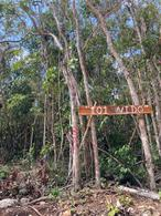 Foto Terreno en Venta en  Boca Paila,  Tulum  Lotes Unifamiliares en privada Nido 101, Aldea Zama, con acceso al mar de Tulum