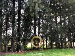 Foto Terreno en Venta en  Lares de Canning,  Countries/B.Cerrado (Ezeiza)  Lares de Canning