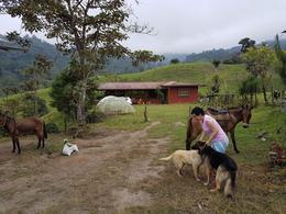 Foto Terreno en Venta en  Norte de Los Bancos,  Los Bancos  Nanegalito