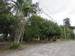 Foto Terreno en Venta en  Curridabat,  Curridabat  Lote residencial en venta en Guayabos de Curridabat