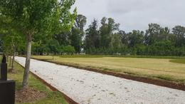 Foto Terreno en Venta en  Villa Elisa,  La Plata  438 Y 144 LOTE EN COUNTRY BARRIO SAN EFREN
