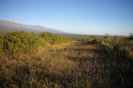 Foto thumbnail Terreno en Venta en  Quebrada De Los Pozos,  San Javier  Los Pozos